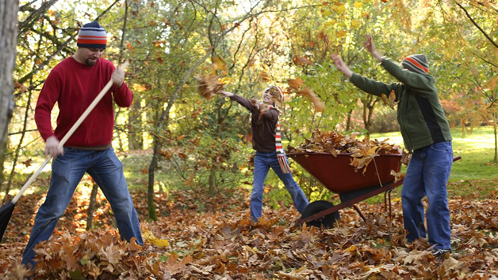 Family Raking Leaves in Fall