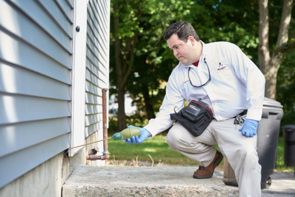 Don't Let Overwintering Pests Invade Your Home