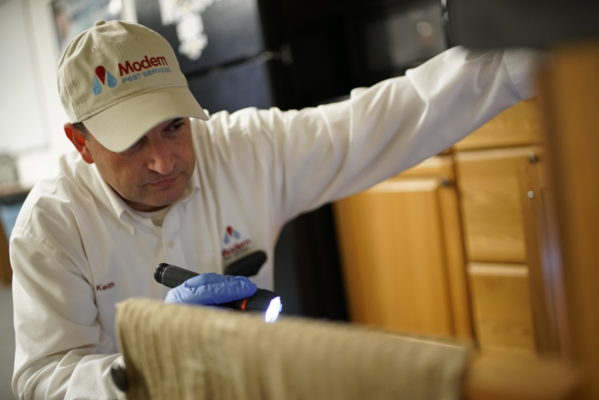 Pest control professional inspecting a kitchen