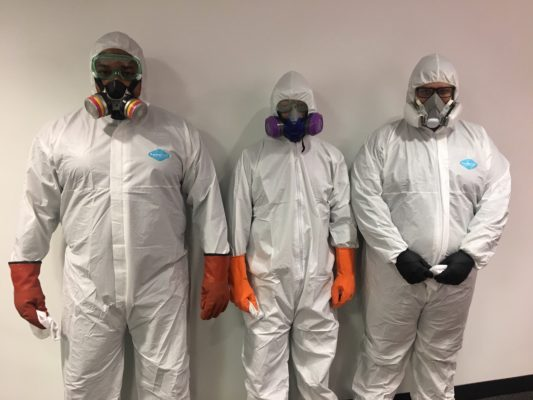 Modern service professionals in disinfection uniforms