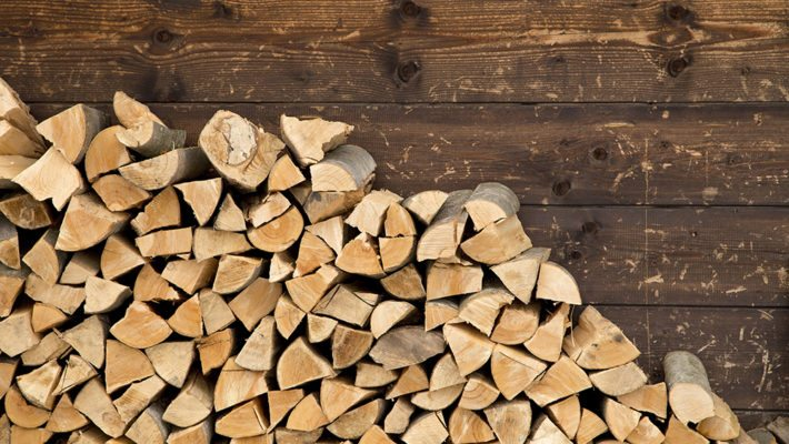 Don't Give Pests A Warm Place To Rest! Tips For Firewood Storage
