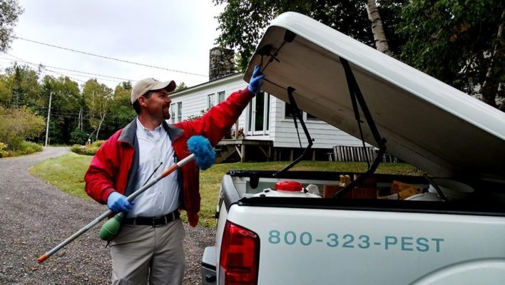 The Top Four Questions We Get Asked About Pest Control