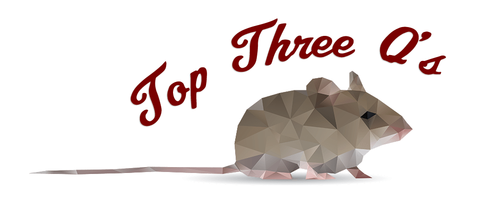 Top Three Q's with a Mouse