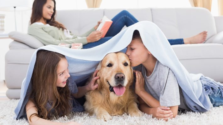 Is Pest Control Safe For My Family and Pets?
