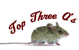 The Top Three Mice Questions