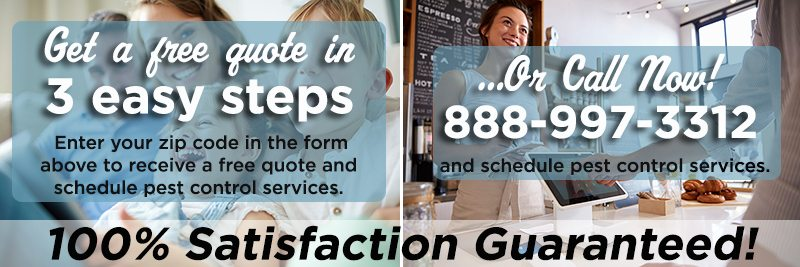 Get a free quote and/or schedule service now.