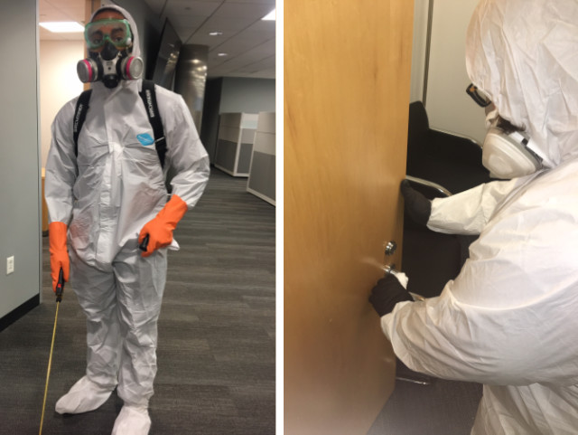 professionals fogging and disinfecting office space