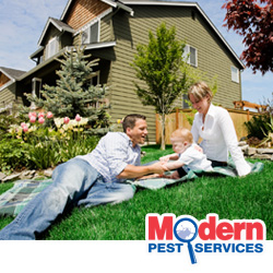 Home Pest Prevention
