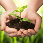 Modern's HomeCare organic pest control protects our environment