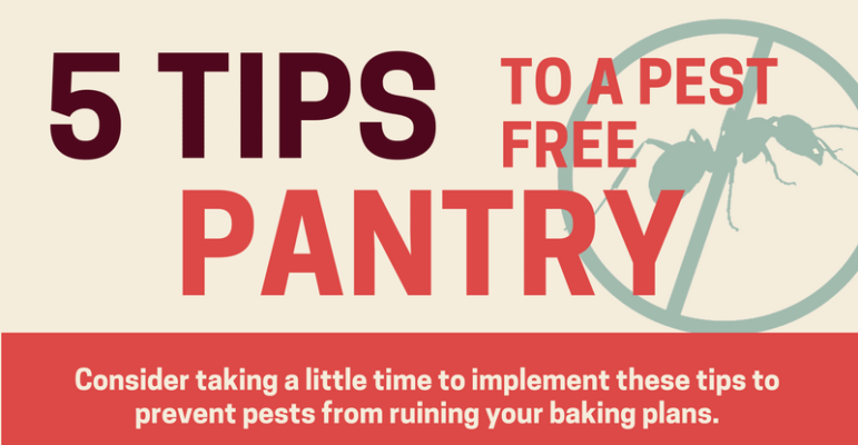 Five Tips To A Pest Free Pantry
