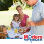 New England pest control experts offer pest prevention tips