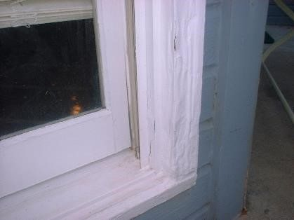 termite damage on window