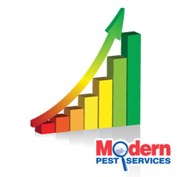 Pest Control Company Rankings