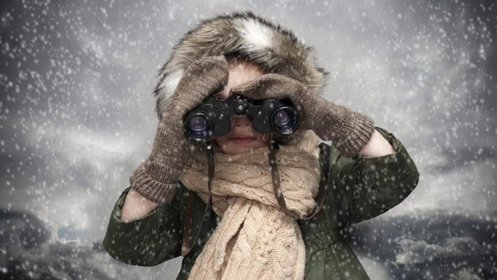 Keep an eye out for these winter wildlife pests!
