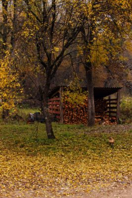 Autumn landscape of wood countryside life with firewood barn